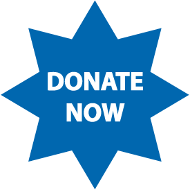 Donate Star Button-01