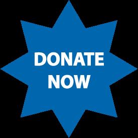 Donate Star Button-01